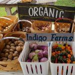 ….Threatens to destroy Indigo Farms Market – A Multi Generational Family ran Organic Farm –